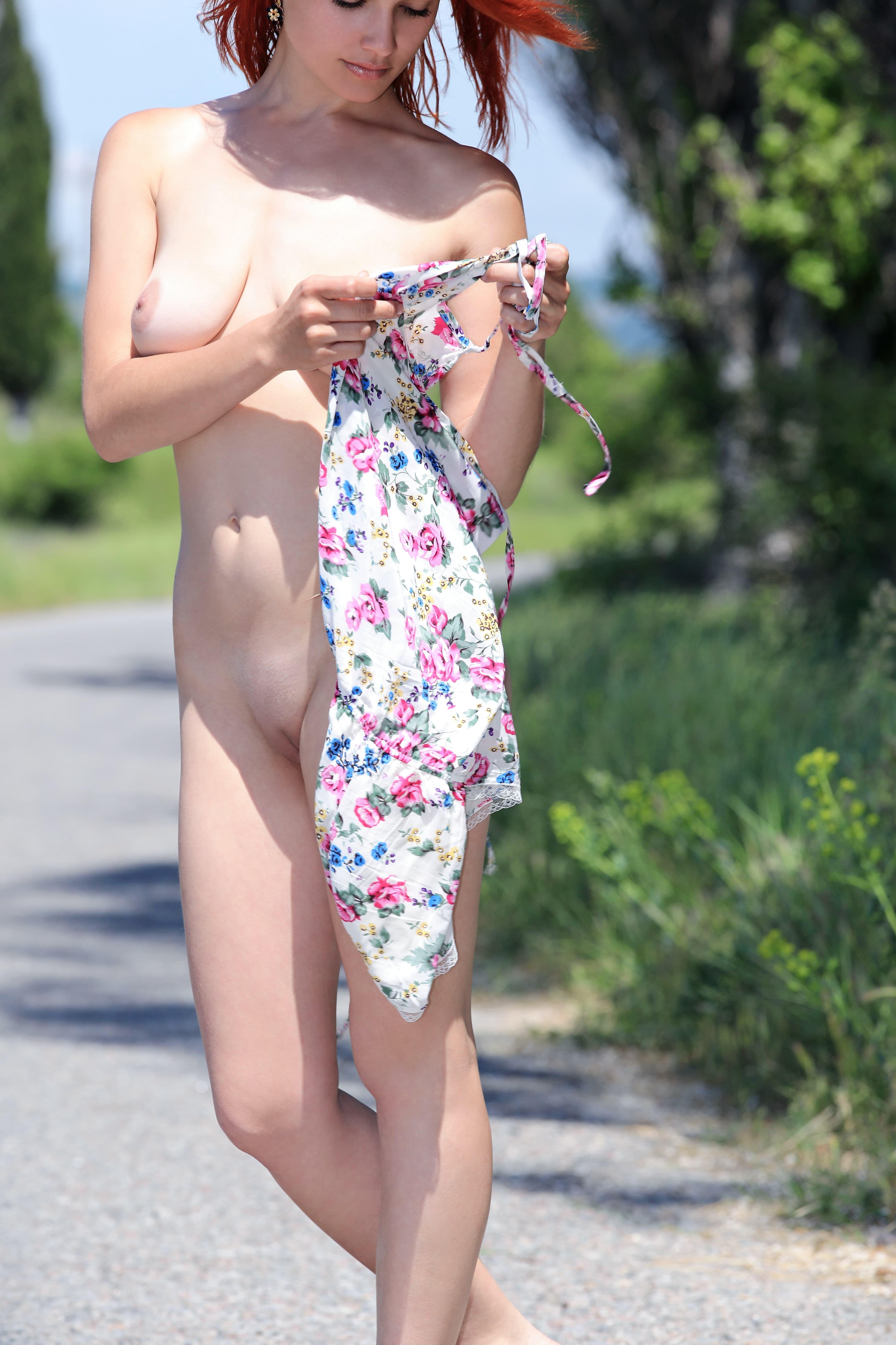 Голая попутчица на дороге - фото